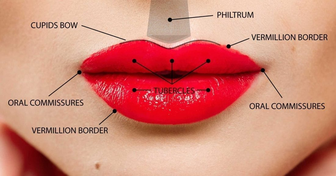 Heart Lips Lip fillers Bromsgrove Dental Clinic
